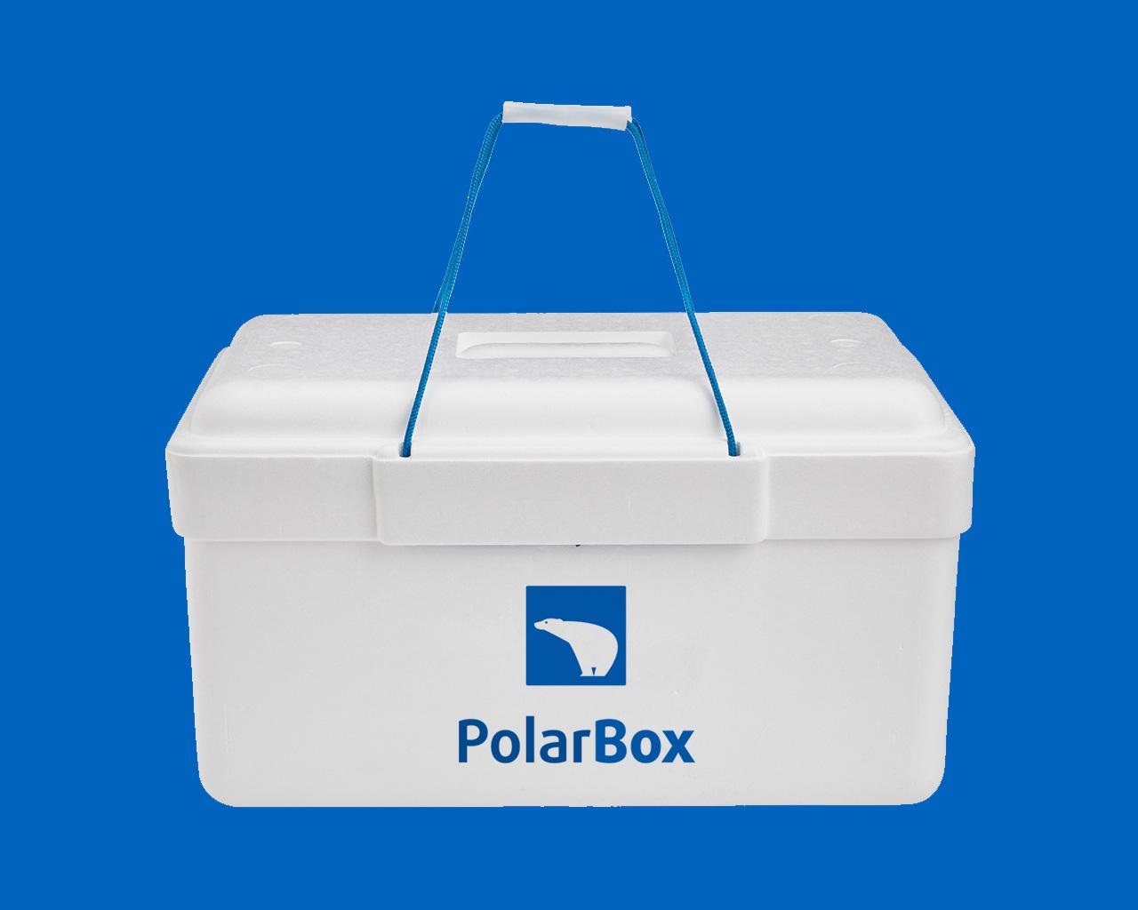 Naming y diseño de logo para PolarBox por Momo & Cía.