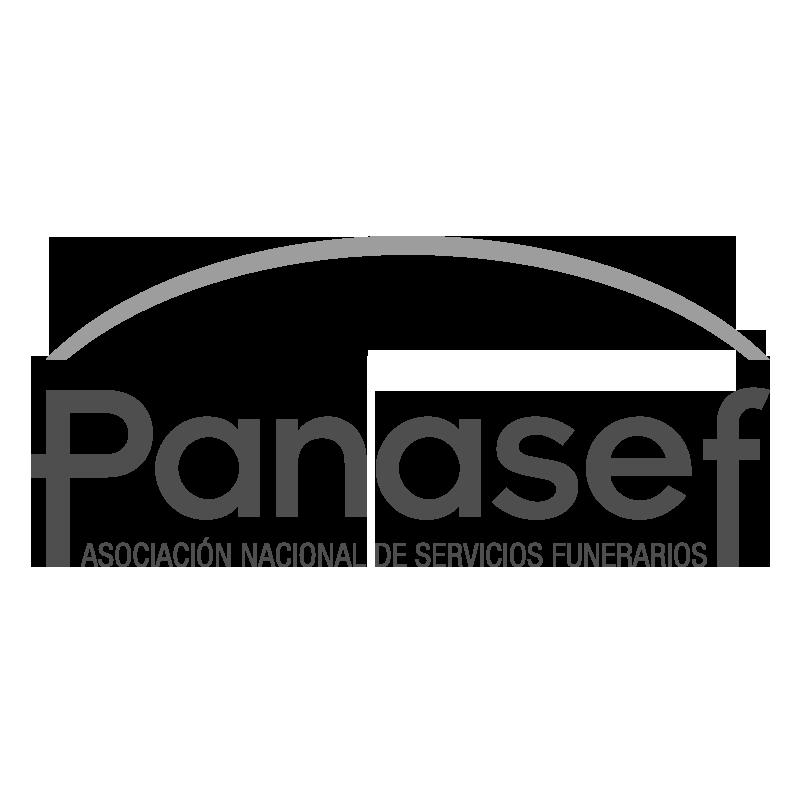 Panasef